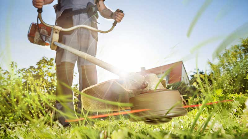 Lawn Maintenance with a Weed Trimmer