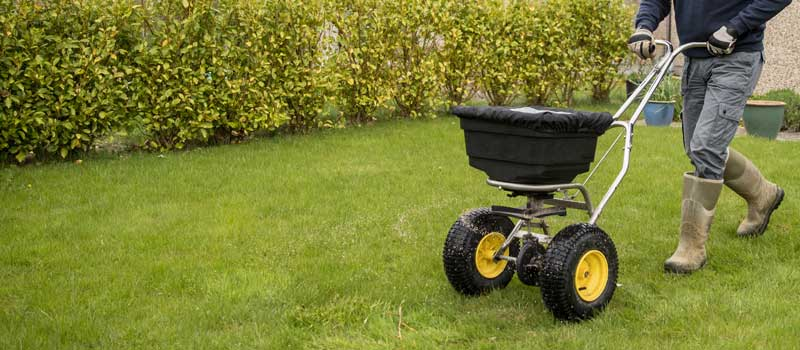 Lawn Care Service adding fertilizer and weed killer to a lawn