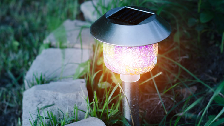 Solar powered light in a garden area as accent lighting.
